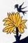 détail de l'oiseau de l'arcane XVII, tarot de Nicolas Conver et tarot de JC Flornoy